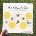THE STORY OF BEES! EDUCATIONAL GAME